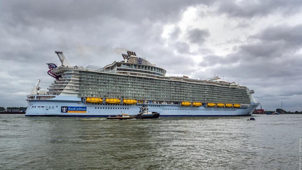 Harmony of the Seas Rotterdam