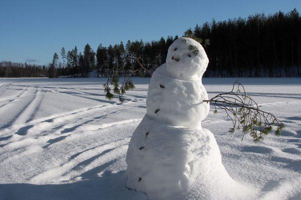 sneeuwpop-groot